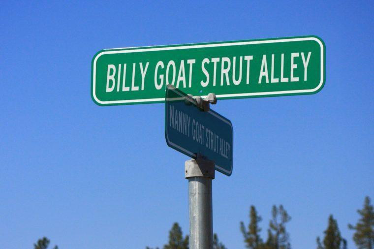 Billy Goat Strut Alley