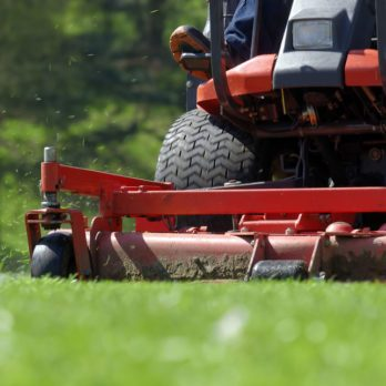 Give Your Lawnmower an Early Summer Tune-Up
