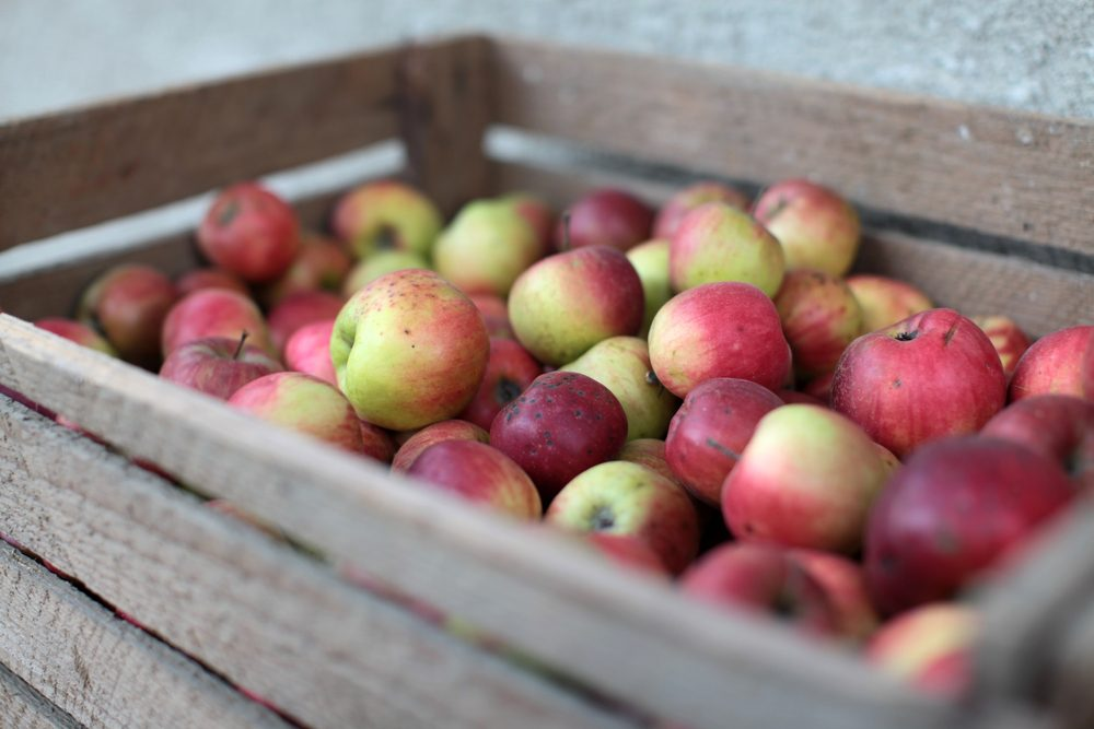 Wooden crate box full of fresh apples