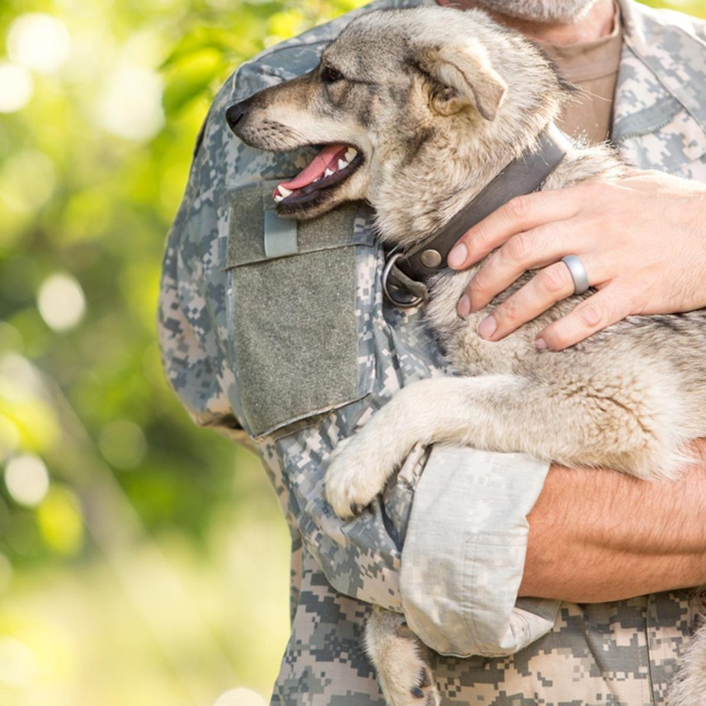 Soldier with a dog on a blurred background