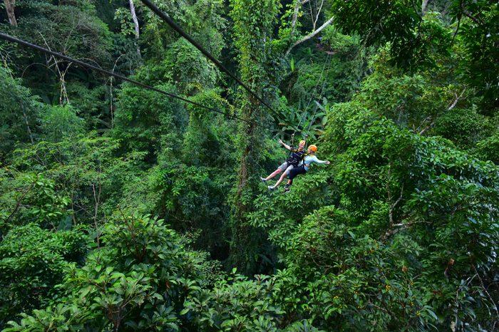 Flight of the Gibbon zip line