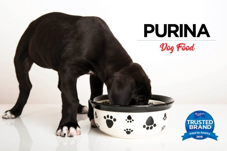 Is Purina Cat Food Made In America