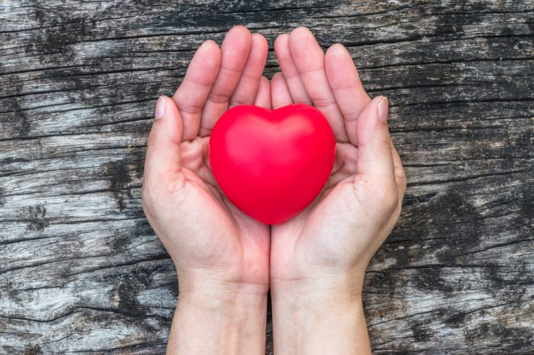 Heart health care medical cardiovascular disease concept and organ donor donation for life giving charity campaign with healthy red love heart on aging woman's hand support