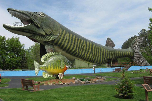 Wisconsin Fish