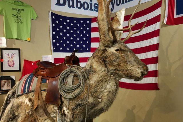 Wyoming Jackalope