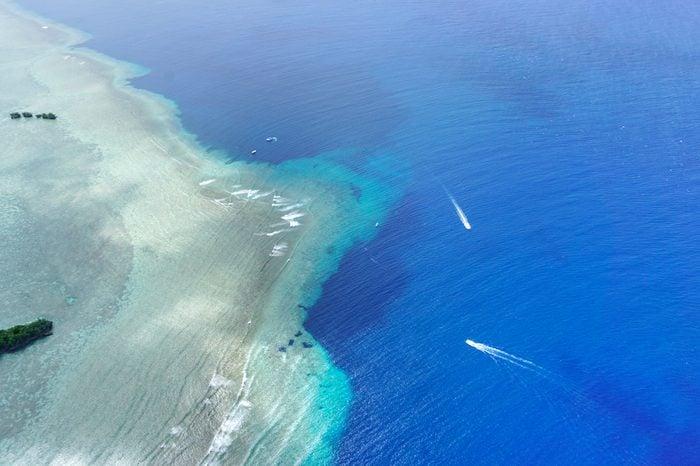 Blue Corner Palau, Best Diving/ Snorkelling, Diving with Sharks, Best of Pacific Islands, Blue Holes, Ngemelis, Pacific Ocean- Micronesia