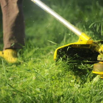 Here's Why You Need to Leave Grass Clippings on the Lawn