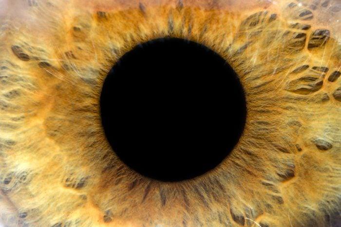 An extreme closeup of an eye.
