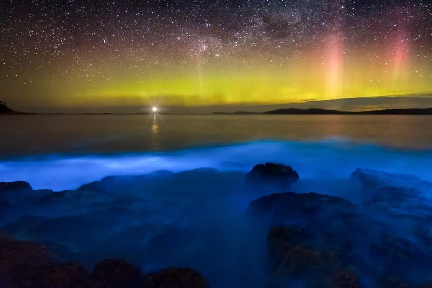 Aurora over bioluminescence