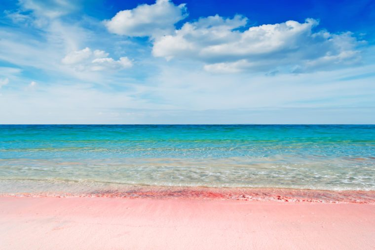 beautiful pink beach under a dramatic sky