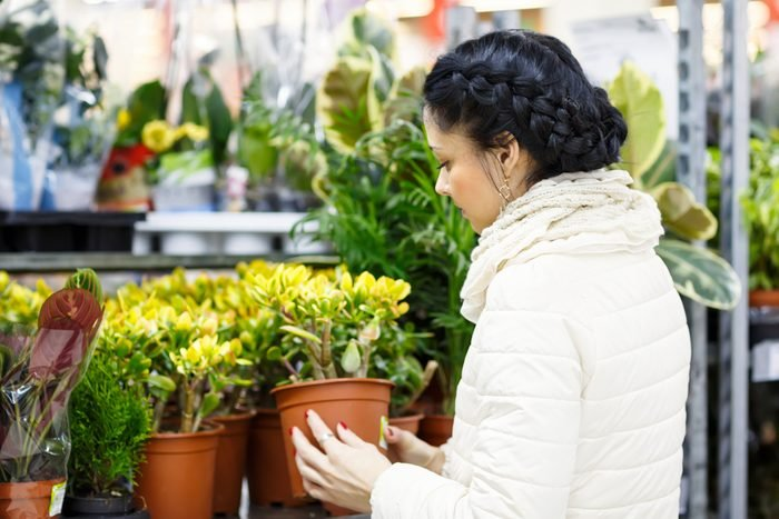 Woman chooses home flowers. Beauty Woman in Shopping Mall .