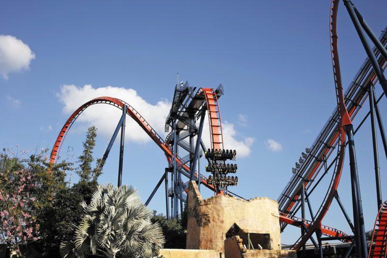 SheiKra Roller coaster in Bush Gardens. Adventure Park Bush Gardens â?? Tampa â?? Florida - USA - November
