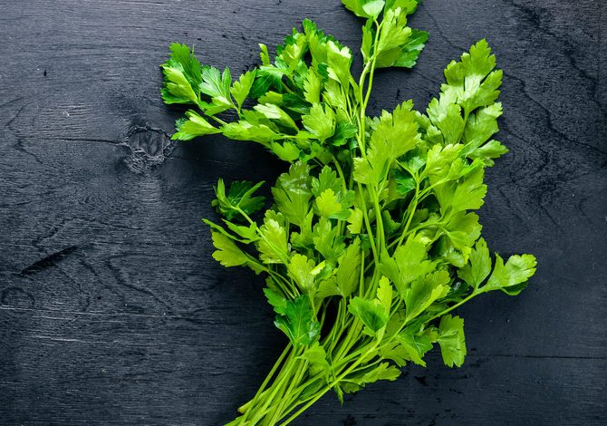 Fresh parsley on black Wooden background. Top view. Free space.