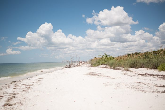 Sand, sky, ocean, and sea grass on the beach in Lovers Key, FL