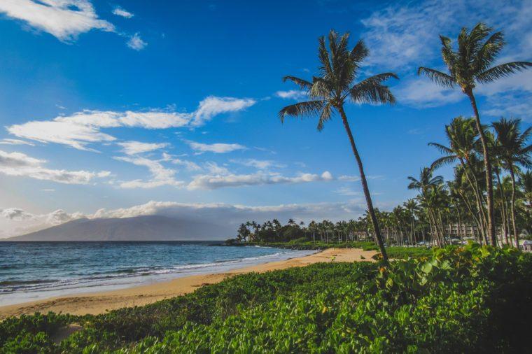 Beautiful palm trees lining the coast at Wailea Beach, Maui, Hawaii