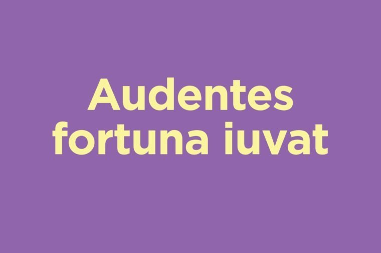 18 Latin Phrases That Will Make You Sound Smarter