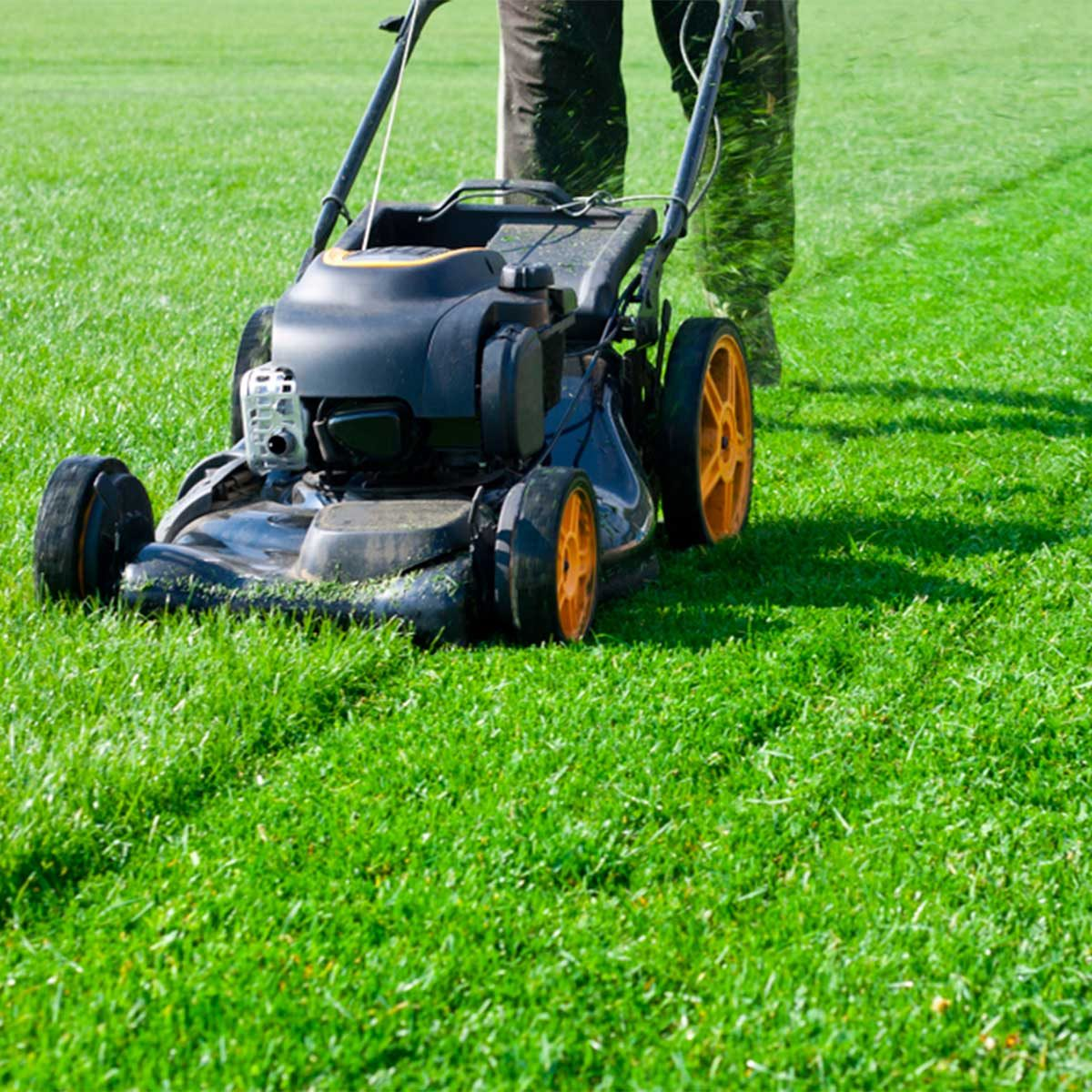 7 tips to mow like a pro | reader's digest
