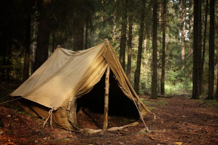 old tent in the autumn forest, home for adventure and travel