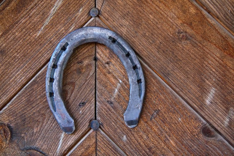 lucky horseshoe on the old door