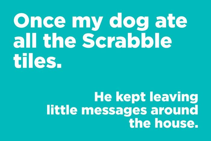 once my dog ate all the scrabble tiles.