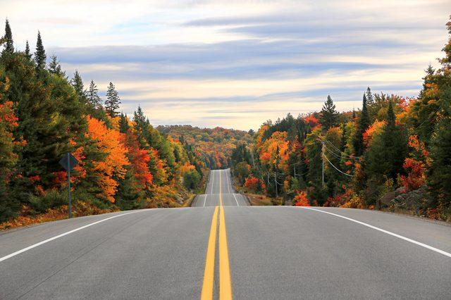 Road through Algonquin Provincial Park in fall, Ontario, Canada