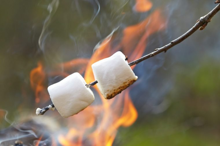 marshmallow on a stick roasted over a camping fire
