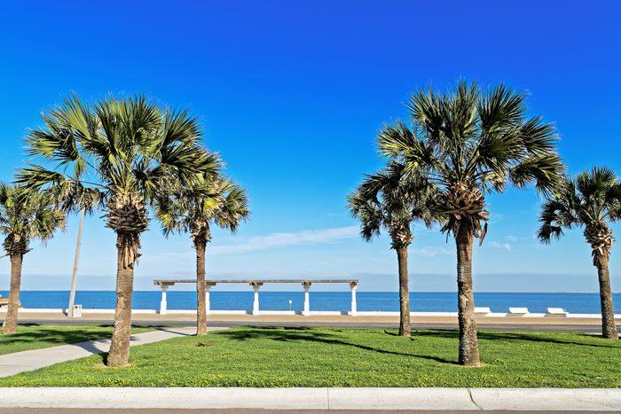 McGee Beach in Corpus Christi, Texas in March