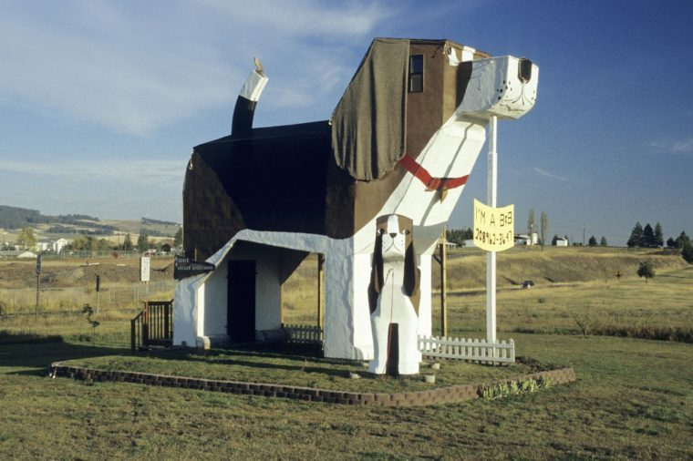 Unusual Bed & Breakfast at Dog Bark Park, Cottonwood, Idaho, USA