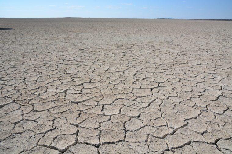 Cracked soil in Makgadikgadi pans, Botswana, Africa