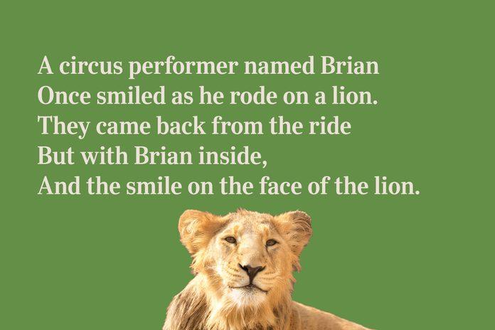 Lion limerick for kids