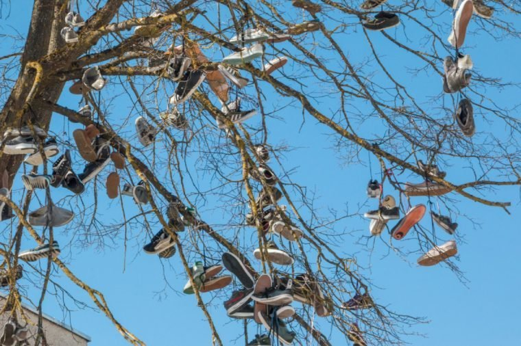 Siauliai. Lithuania. April 21, 2018. Shoes hang on the tree.