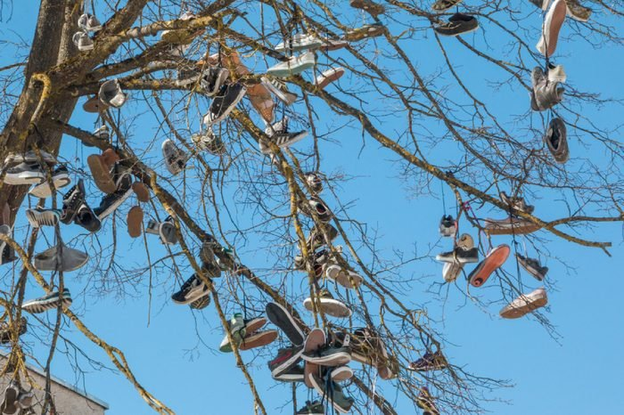 Siauliai. Lithuania. April 21, 2018. Shoes hang on the tree.