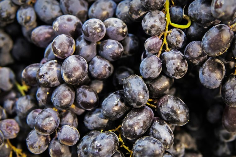 Red wine grapes background, dark grapes, blue wine grapes. Black grape raisins. seedless grapes