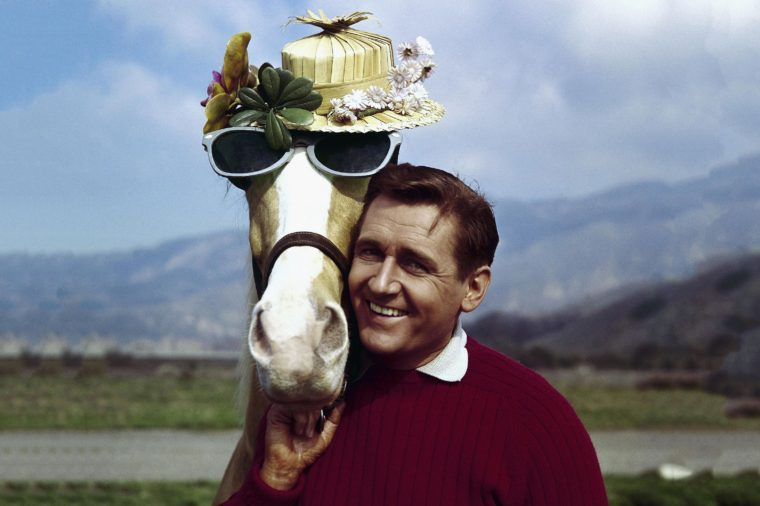 "Actor Alan Young poses with the ""Mister Ed,"" horse. Young died . He was 96"