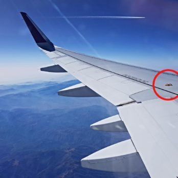 The Little-Known Airplane Feature That Could Save Your Life