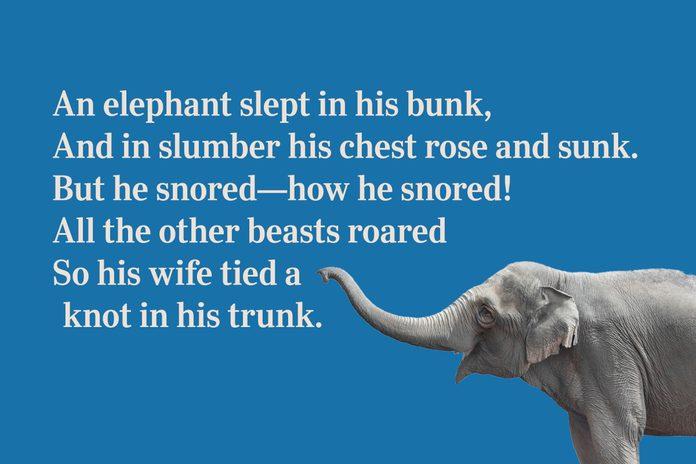 Elephant trunk limerick