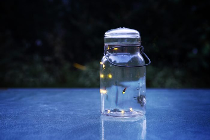 Fireflies in a jar outdoors at night