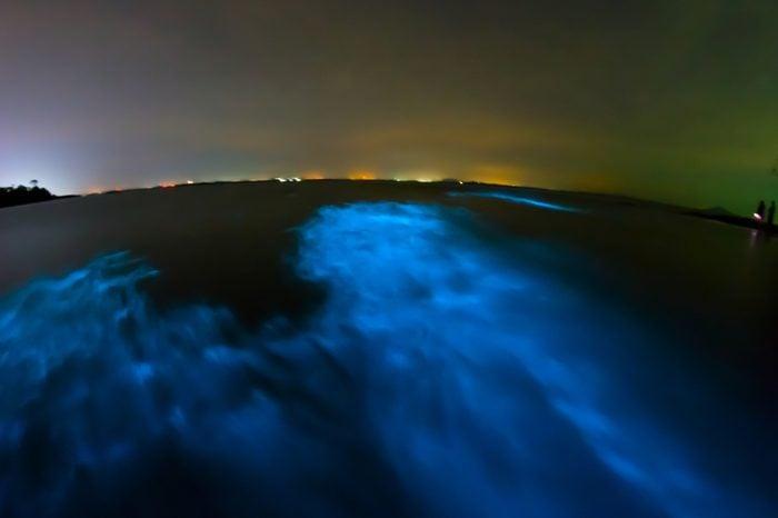 Bioluminescence in night sea water. Blue fluorescent wave of bioluminescent plankton, long exposure shot, Thailand.