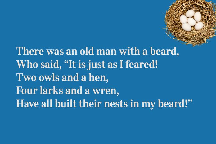 beard nest limerick for kids