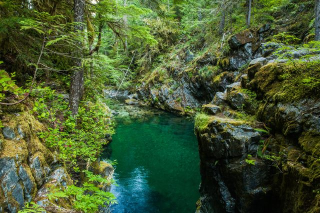 Opal Creek in the Opal Creek Wilderness. It is a wilderness area located in the Willamette National Forest in Oregon.