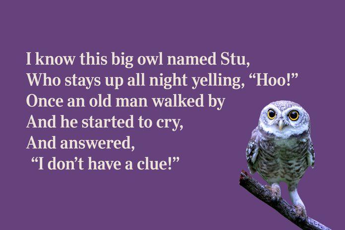 Owl limerick