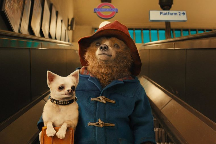 'Paddington' Film - 2014
