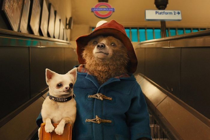 'Paddington' Film - 2014