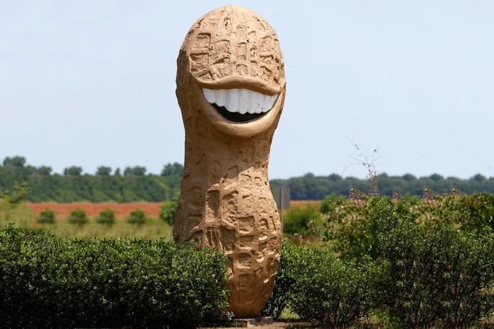 A peanut statue is shown in Plains, Ga, . Plains is the home town and birth place of former President Jimmy Carter