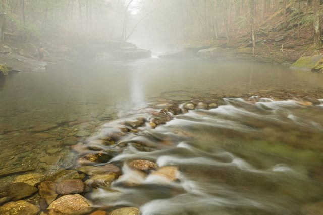 Peekamoose Blue Hole wrapped in Spring fog on the Rondout Creek in Denning, New York.