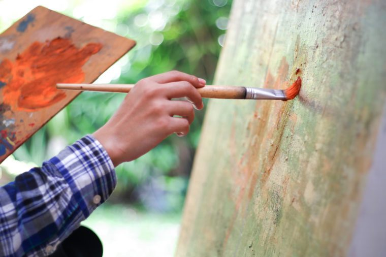 close up of artist using drawing brushes.