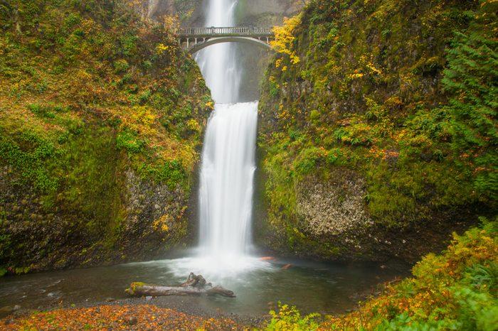 Multnomah falls in the Columbia River Gorge east of Portland, Oregon.