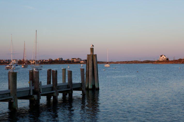 Seagulls enjoying sunset at the Great Salt Pond at Block Island, Rhode Island