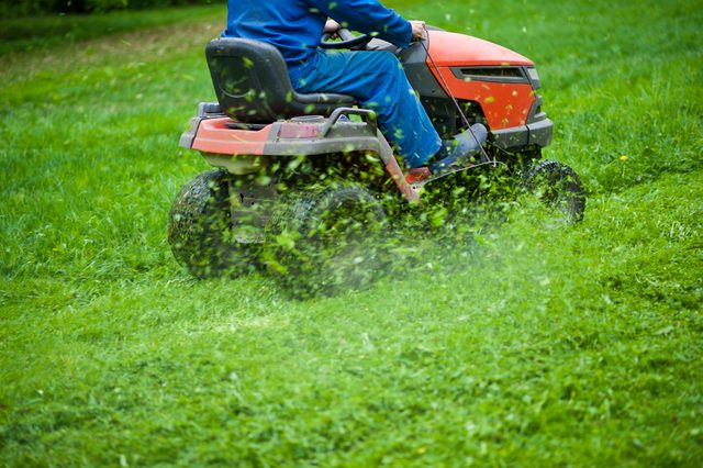The gardener mows the grass on the lawn mower in the park