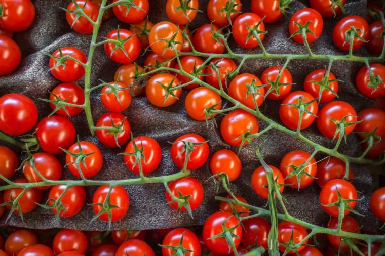 Fresh organic grape tomatoes on the vine background